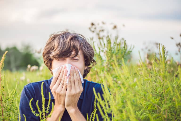 Climate Change Is Resulting In More Pollen, Allergies, Asthma